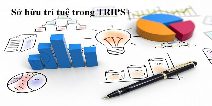 Sở hữu trí tuệ trong TRIPS+