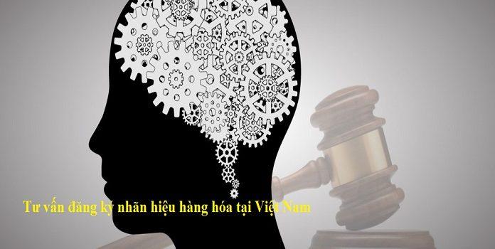Tư vấn đăng ký nhãn hiệu hàng hóa tại Việt Nam