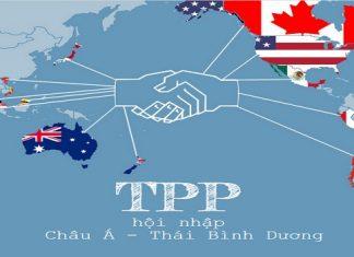 Vi phạm quyền sở hữu trí tuệ trong TPP